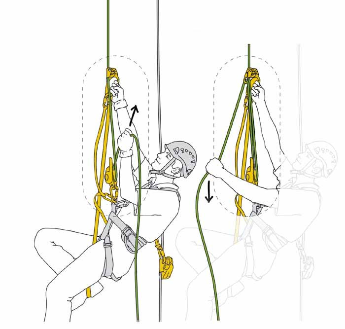 rope-access-petzl-ascent-1.jpg